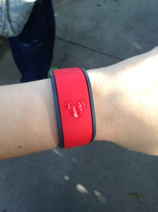 MagicBand at Disney World